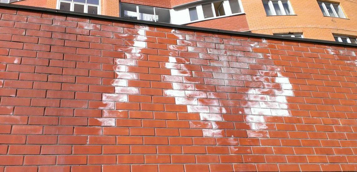 высолы на стене